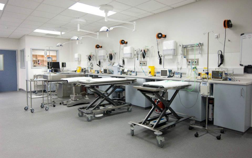 icu nursing